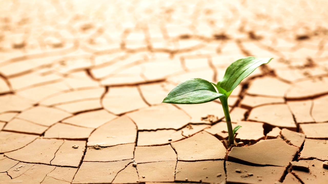 Sustainable Energy Solutions förslår kvittningsemission om 3 miljoner kronor